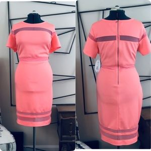 NWT JCPENNY VACATION CORAL DRESS SZ 2XL